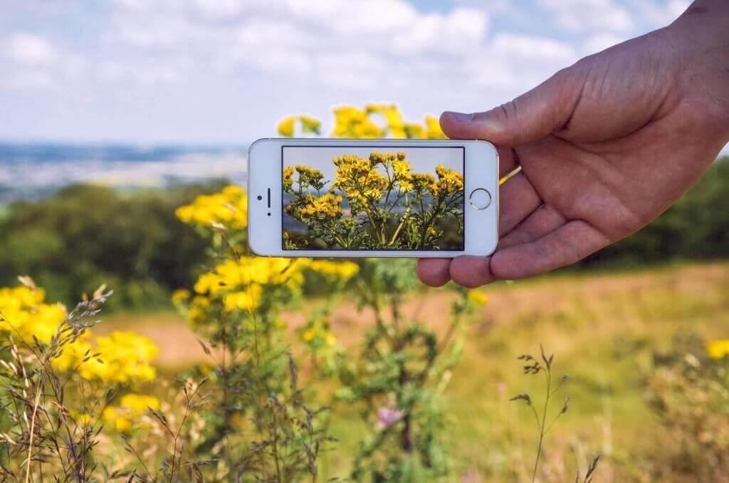 schöne Fotos mit dem Smartphone
